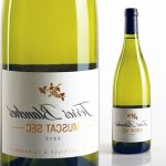 Test vin blanc sec appellation